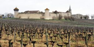Chinese tycoons snap up Bordeaux chateaux