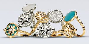 Dior Charms with Rose des Vents Jewelry