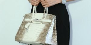 Himalaya Kelly 25: The most desirable handbag in existence